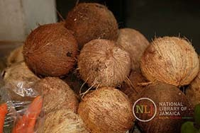 d_0004381_dry_coconuts.JPG