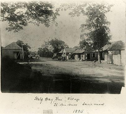 d_0007529_half_way_tree_village_1885.jpg