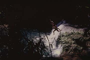 d_0007318_ys_falls_leapers_st_elizabeth.jpg