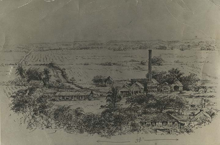 http://nlj.gov.jm/Digital-Images/d_0003656_fort_william_estate.jpg