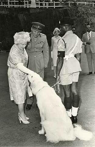http://nlj.gov.jm/Digital-Images/d_0003855_queen_elizabeth.jpg