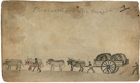 d_0004703_planters_cart_with_sugar.jpg