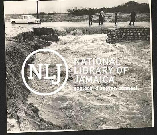 d_0008132_floods_jamaica.jpg