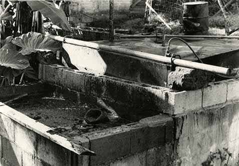 http://nlj.gov.jm/Digital-Images/d_0003868_biogas_plant_golden2.jpg