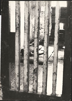 d_0007411_bellevue_hospital_inmate.jpg