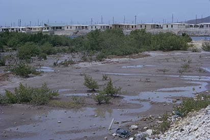 d_0006600_edgewater_mangrove_swamp_housing.jpg