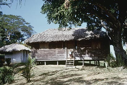 d_0006156_blenheim_bustamante_birthplace.jpg