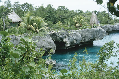 d_0007123_negril_west_end_cliffs_resort.jpg