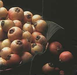 d_0006815_rose_apples.jpg