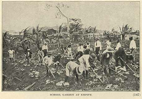 School garden at Empire