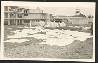 d_0007398_princess_margaret_hospital.jpg