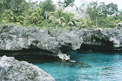 d_0007121_negril_west_end_cliffs_resort.jpg