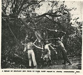 http://nlj.gov.jm/Digital-Images/d_0004113_army_clearing_lines.jpg