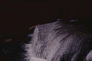 d_0007316_ys_falls_diver_st_elizabeth.jpg