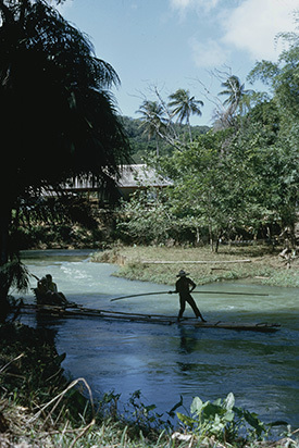 d_0006250_martha_brae_river_rafting.jpg
