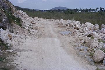 d_0007059_milk_river_alligator_pond_coast_road2.jpg