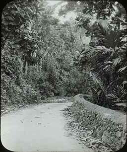 d_0005667_slide_57_dirt_road.jpg