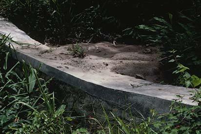 11Check dam, Liver River, St. Andrew (19--) 2 (2).jpg