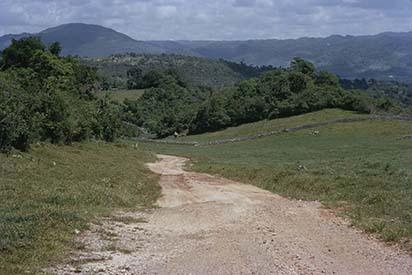 d_0006232_hills_above_mandeville_manchester.jpg