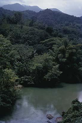 d_0007165_rio_grande_blue_mountains.jpg