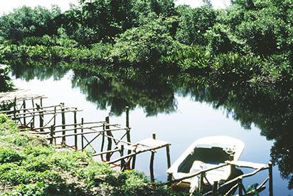 d_0007114_negril_river_westmoreland.jpg