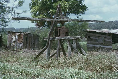 10 Cave Valley; Old Sugar Cane Mill (1977).jpg