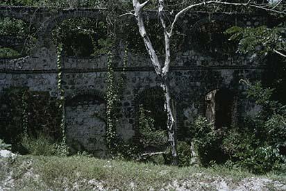 d_0007244_ruins_near_ironshore_st_james.jpg