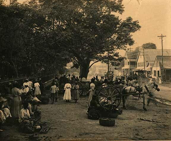http://nlj.gov.jm/Digital-Images/d_0003781_street_view_kgnja.jpg