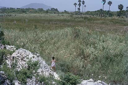 26 Milk River-Alligator Pond Swamps and Round Hill (1971).jpg