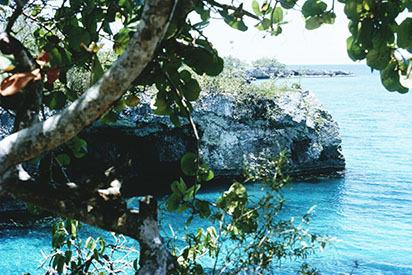 d_0007125_negril_west_end_cliffs.jpg