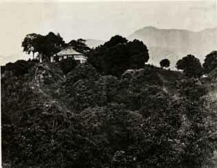 http://nlj.gov.jm/Digital-Images/d_0001895_strawberry_hill_great_house.jpg