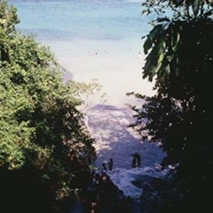 d_0006593_dunns_river_falls_beach_sea.jpg