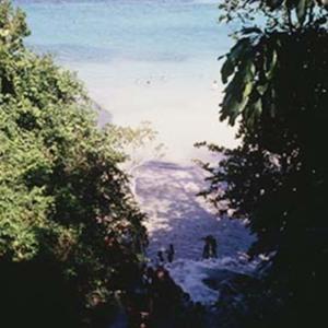 d_0006593_dunns_river_falls_beach_sea.jpg