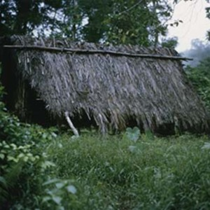 d_0007286_thatched_hut_quick_step.jpg