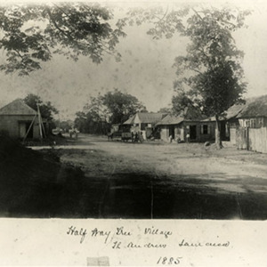 d_0007529_half_way_tree_village_1885.jpg