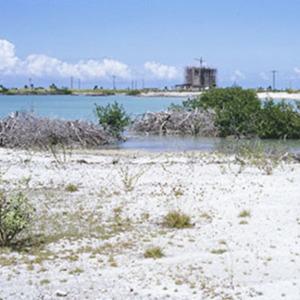 d_0007078_mobay_reclamation_artificial_beach_montego_freeport.jpg