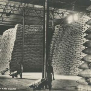 d_0006853_stacking_bags_raw_sugar.jpg