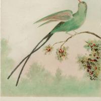 d_0004849_humming_bird_no_i.jpg
