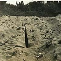 http://nlj.gov.jm/Digital-Images/d_0003705_fault_palisadoes.jpg