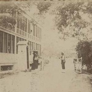 d_0006790_jamaica_1905.jpg
