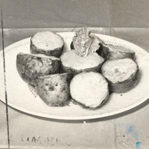 d_0007997_irish potato.jpg