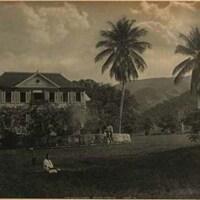 The House Cherry Garden Jamaica