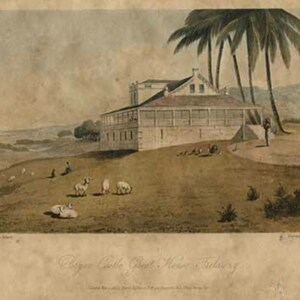 d_0007490_bryan_castle_great_house_trelawny.jpg