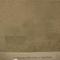 d_0006000_blowing_walls_toniataba.jpg