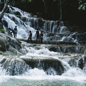 d_0006604_dunns_river_falls_ocho_rios.jpg