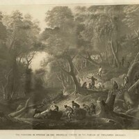 The Maroons in ambush on the Dromilly Estate in the parish of Trelawny