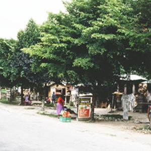 d_0007115_negril_roadside_market_westmoreland.jpg
