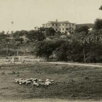 Agualta Vale House and grounds