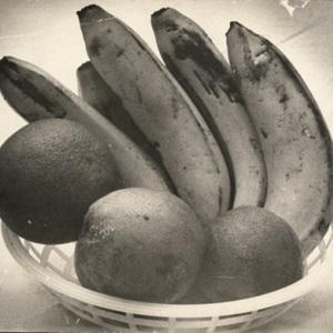 d_0008006_fruits.jpg