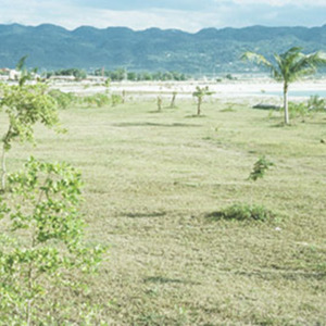 d_0007081_mobay_waterfront_reclamation_landscaping.jpg